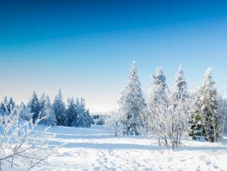 Landschaft im Winter mit Schnee