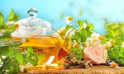 Eine Kanne Tee und Kräuter für die Gesundheit