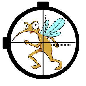 Mücken vertreiben, Hausmittel Mücken in der Wohnung bekämpfen